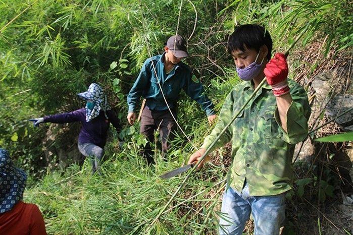 Nguyên liệu ống hút tre giúp tạo công ăn việc làm cho dân