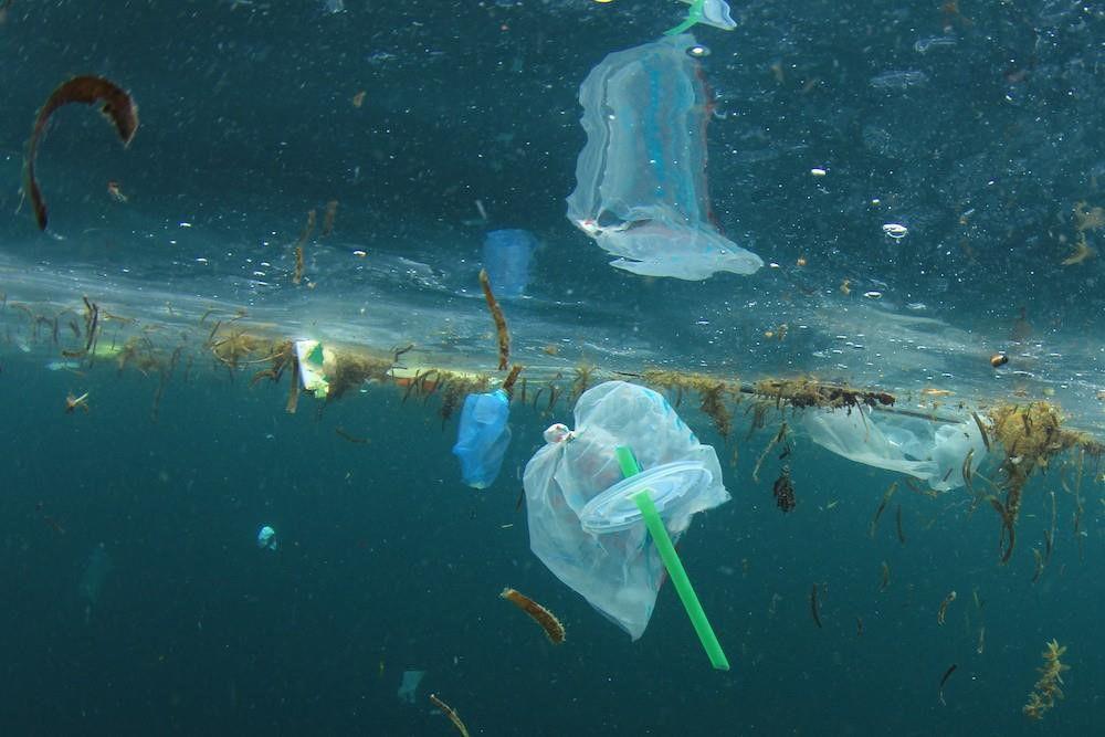 hàng tấn ống hút nhựa thải ra mỗi ngày